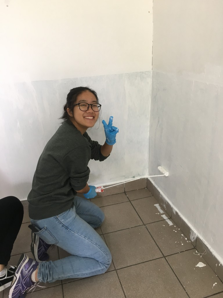 Student Union executives are painting the walls of their office